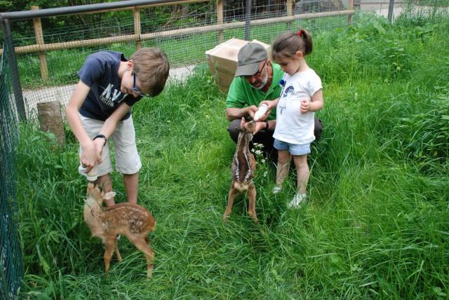 6 actividades para niños de 4 a 7 años en el Valle de Aran