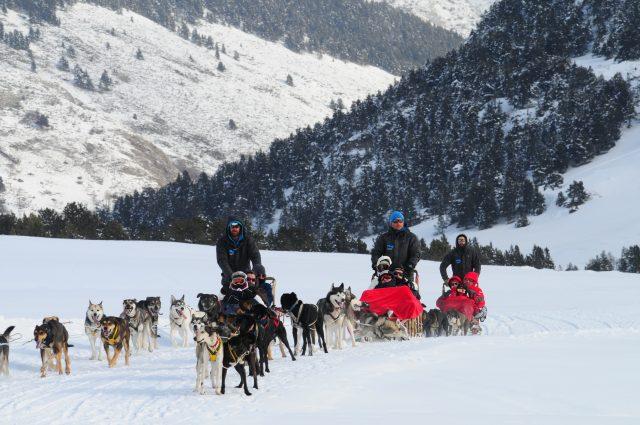 Trineo de perros en Baqueira Beret